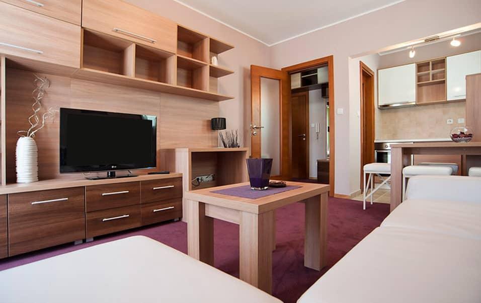 Slika Classic apartmana hotela Solaris u Vrnjackoj Banji. Na slici se vidi dnevni boravak sa policama, tv, kuhinjom i prostorom za sedenje